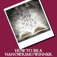 #NaNoWriMo Story Planning in 11 Steps #writetip @smoothdraft