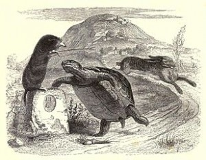 Creative Commons License. Source GRANDVILLE Jean, illustration from the 1855 edition of La Fontaine's Fables