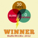 How did #NaNoWriMo 2013 go for you? (poll)